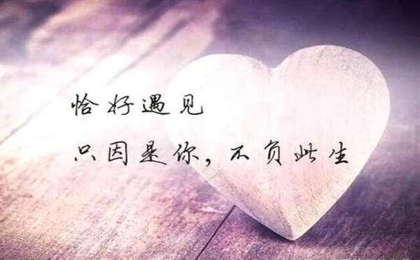 形容对爱情忠贞的句子,对感情专一的霸气句子